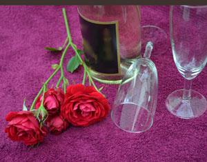 romantisches picknick tipps und vorbereitung. Black Bedroom Furniture Sets. Home Design Ideas